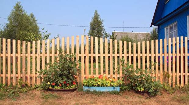 21 фотоидея, как сделать деревянный забор своими руками за несколько дней