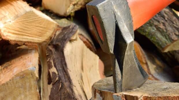 Россия столкнулась с дефицитом древесины для строительства домов