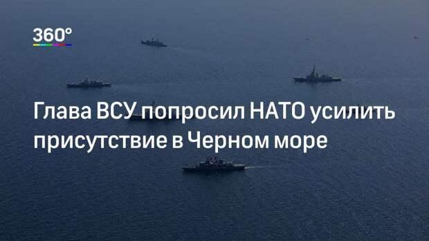 Глава ВСУ попросил НАТО усилить присутствие в Черном море