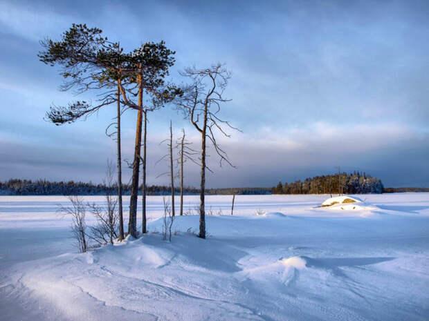 Отдых зимой
