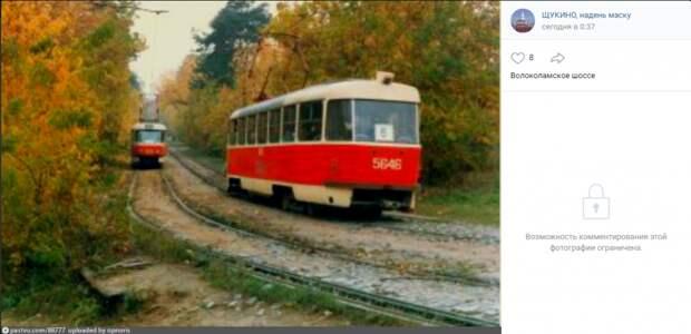 Фото дня: романтика щукинских трамваев