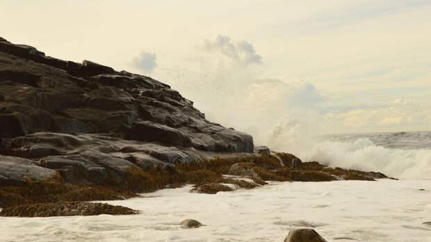 Минобороны РФ сообщило об обнаружении затонувшей в годы ВОВ подлодке в Баренцевом море