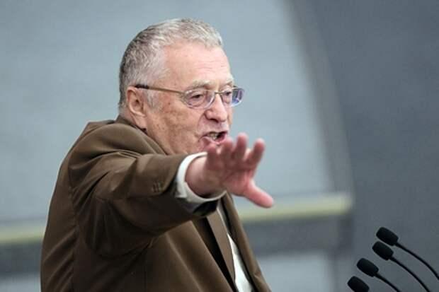 Жириновский предложил сократить новогодние каникулы