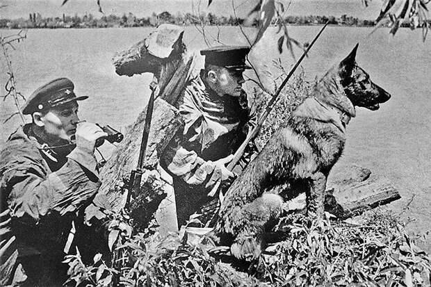 Десятидневный бой 13-й погранзаставы летом 1941.