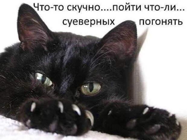 Забавные приметы из древней Руси