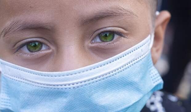 Прививки влагерь: берутли влагерь без прививок в2021