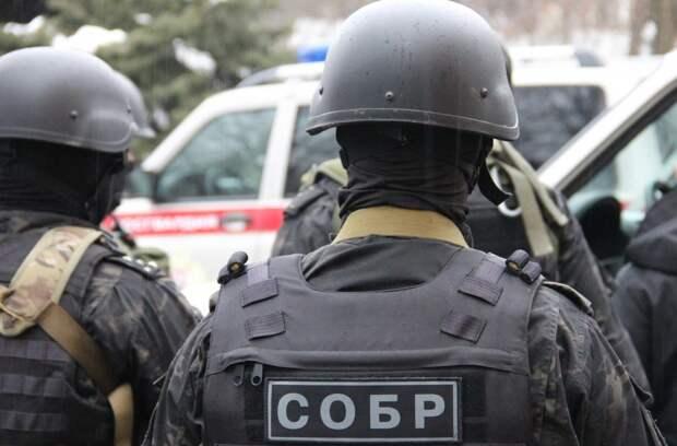 Спецоперация позадержанию украинских «наркобаронов» вРоссии: впечатляющие кадры (ВИДЕО) | Русская весна