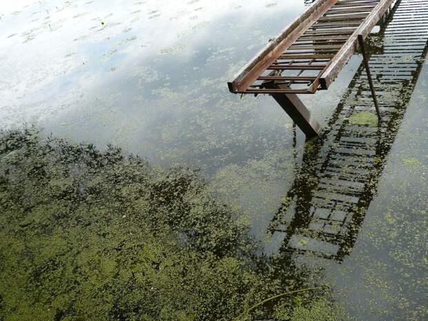 В Удмуртии водолазы ищут пропавших на прудах мужчину и женщину