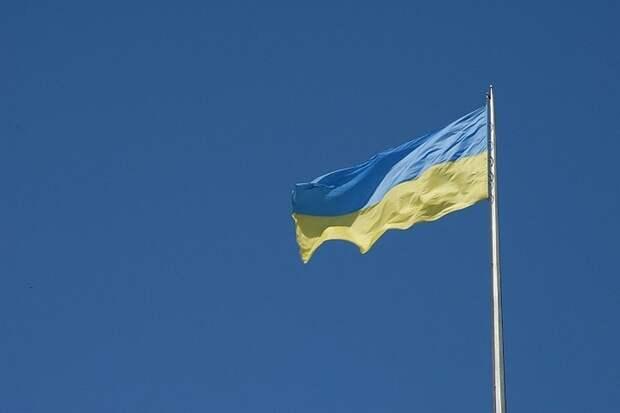 Депутат Рады спровоцировал скандал в стенах ПАСЕ, достав украинский флаг