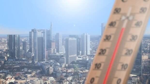 Жара до 31 градуса ждет москвичей в субботу