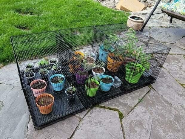 Своими руками: 20+ любопытных и креативных идей для сада