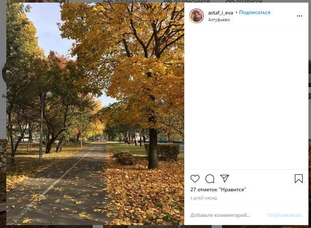 Фото дня: Алтуфьево засыпало «золотом»