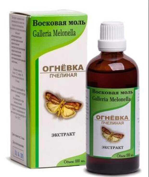 Лекарство, которое лечит сердце, сосуды и весь организм - настойка восковой моли. Ценнейший биостимулятор от пчеловодов