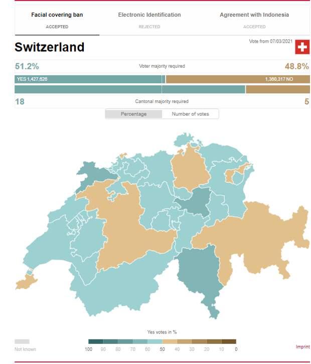 В Швейцарии на референдуме поддержали запрет на полное закрытие лица