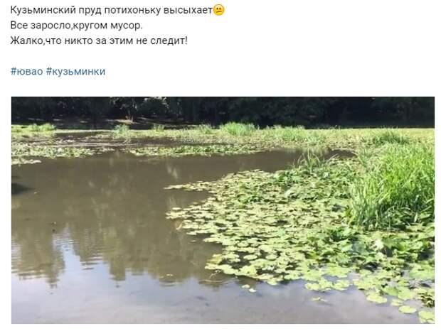 Чистые воды Чурилихи спасут Верхний Кузьминский пруд