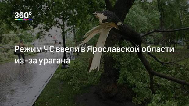 Режим ЧС ввели в Ярославской области из-за урагана