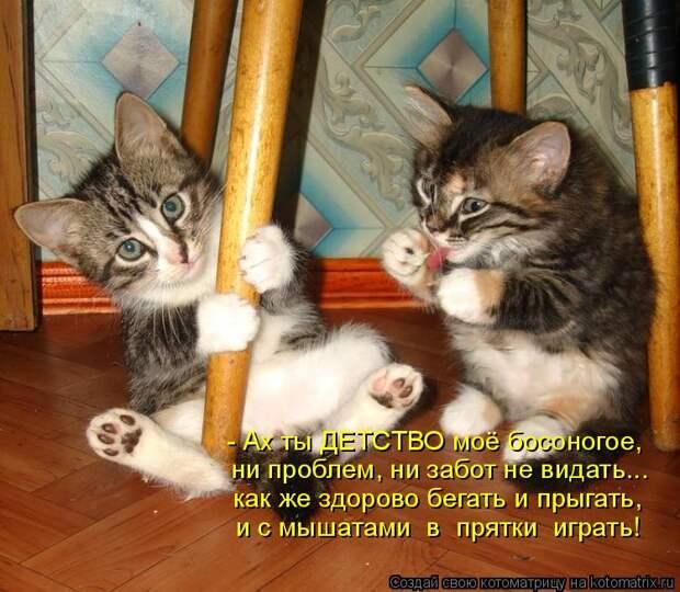 Котоматрица: - Ах ты ДЕТСТВО моё босоногое, ни проблем, ни забот не видать... как же здорово бегать и прыгать, и с мышатами  в  прятки  играть!