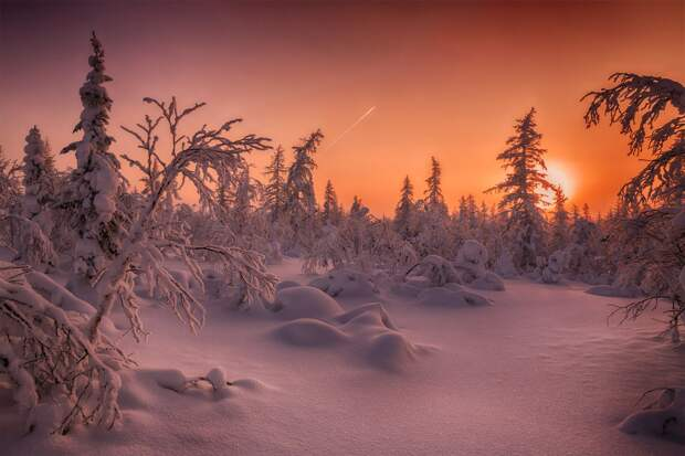 Природа России 43