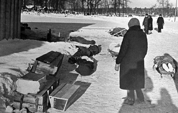 блокада ленинграда жертвы Фото: mvd.ru