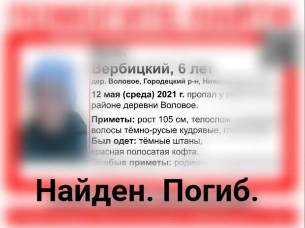 Пропавший шестилетний мальчик в Нижегородской области найден погибшим