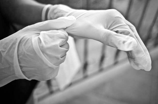 В Санкт-Петербурге отменили перчаточный режим
