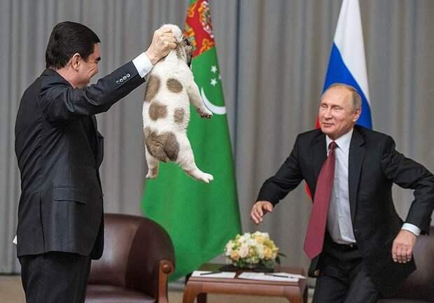 Ишвец, ижнец, ивсем туркменам… образец: как живет диктатор-романтик Гурбангулы Бердымухамедов
