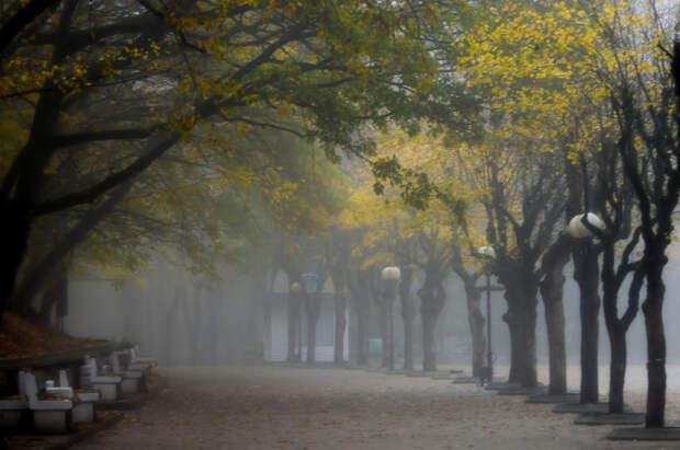 Autumn path...... by Юрий Цыплятников on 500px.com