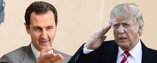 Трамп: Я хотел ликвидировать Башара Асада, но в Пентагоне были против