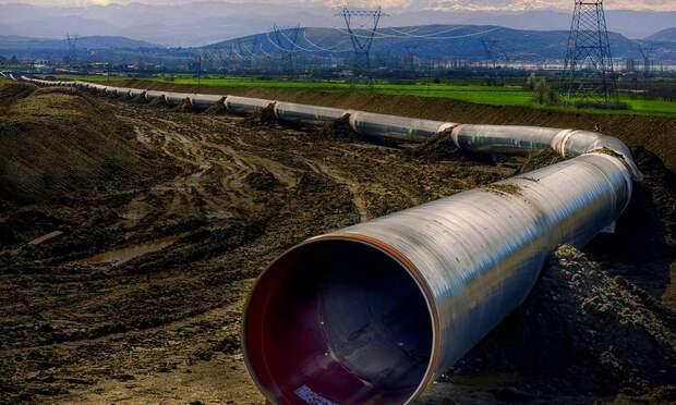 Кибератака на трубопровод в США обернулась топливным кризисом.