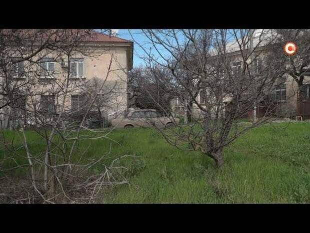 Какими хотят видеть свои скверы жители Нахимовского района? (СЮЖЕТ)