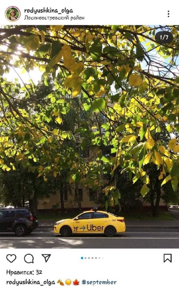 Фото дня: такси цвета листьев в осенней Лосинке