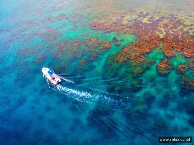 29 лучших фото мая-2013 от канала National Geographic