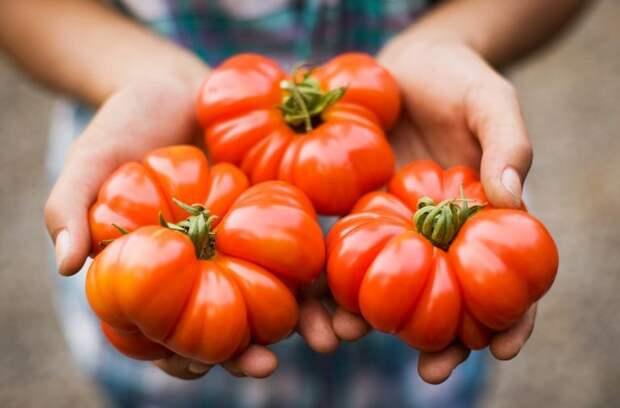 Лучшие продукты для здоровья сердца