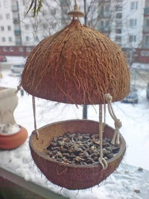 Кормушка из кокоса