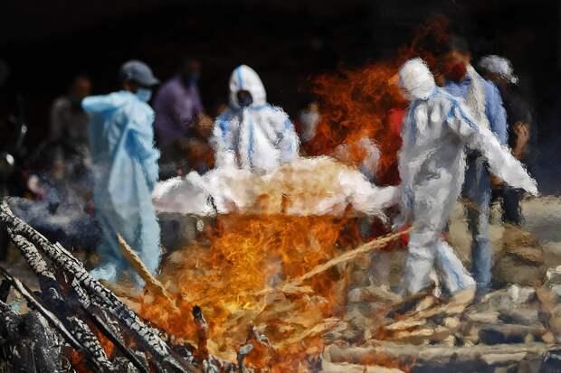 """Инфекционист из Индии рассказал, как страна переживает """"вторую волну"""" COVID"""