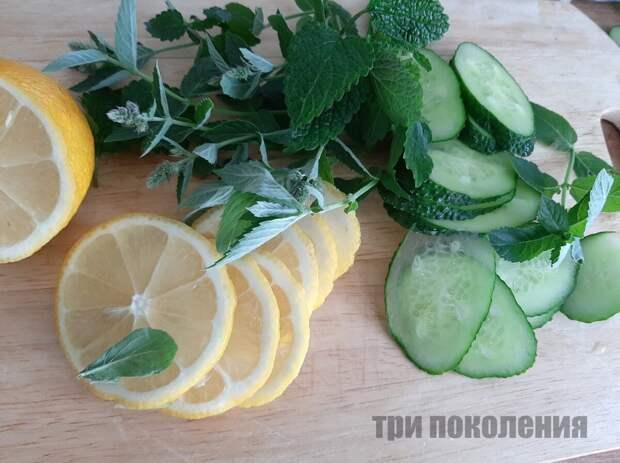 Огуречная вода. Три рецепта освежающих напитков, или как потратить дачные огурцы с пользой для здоровья