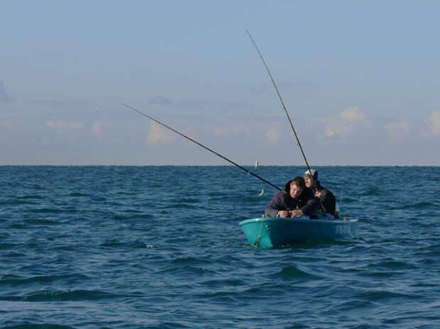 Ловля ставридки с лодки на фидер