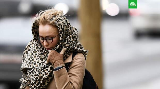 Жара в Центральной России сменится похолоданием на 10 градусов