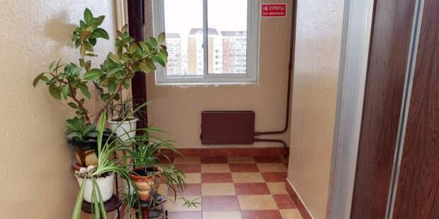 Оконные рамы в подъезде дома на Ленинградке заменят в ходе капремонта