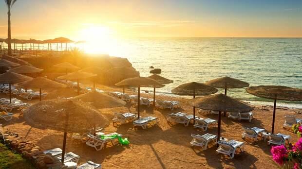 Названы сроки возобновления полетов на курорты Египта