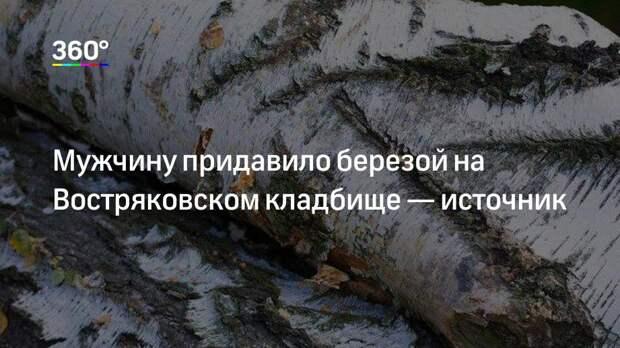 Мужчину придавило березой на Востряковском кладбище— источник