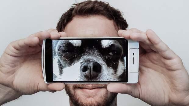 Выбираем доступный смартфон для блогера