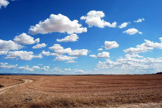 В Удмуртии предложили сократить срок неиспользования земель сельхозназначения до 2 лет