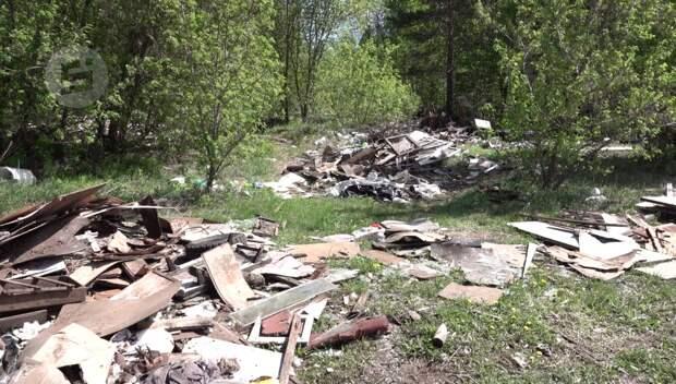 Фотоловушки для «гадящих» в лесах появятся в Удмуртии