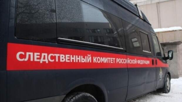 Мальчик шести лет пропал без вести под Новосибирском