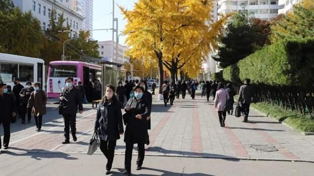 В КНДР опасаются передачи коронавируса через листовки из Южной Кореи