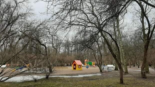 Петербуржцы смогут посетить еще четыре сквера после просушки