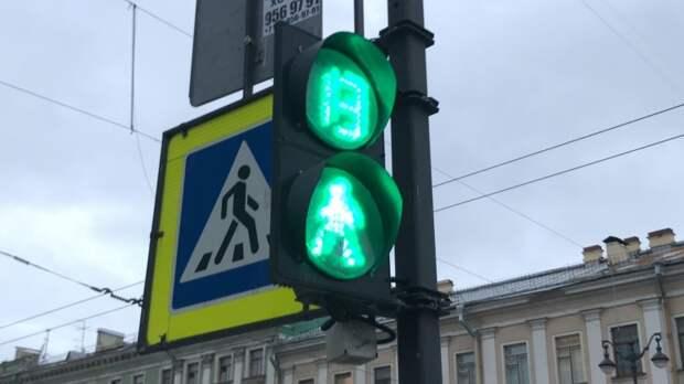 Десятилетний мальчик переходил дорогу на «зеленый» и попал под иномарку в Петербурге