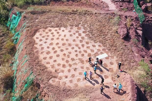 Китайские ученые нашли останки динозавра неизвестного вида