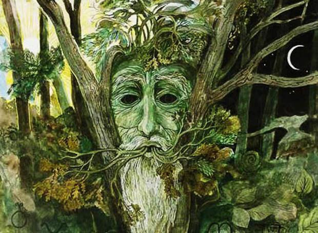 Какое вы дерево по кельтскому гороскопу? Вот что это для вас значит